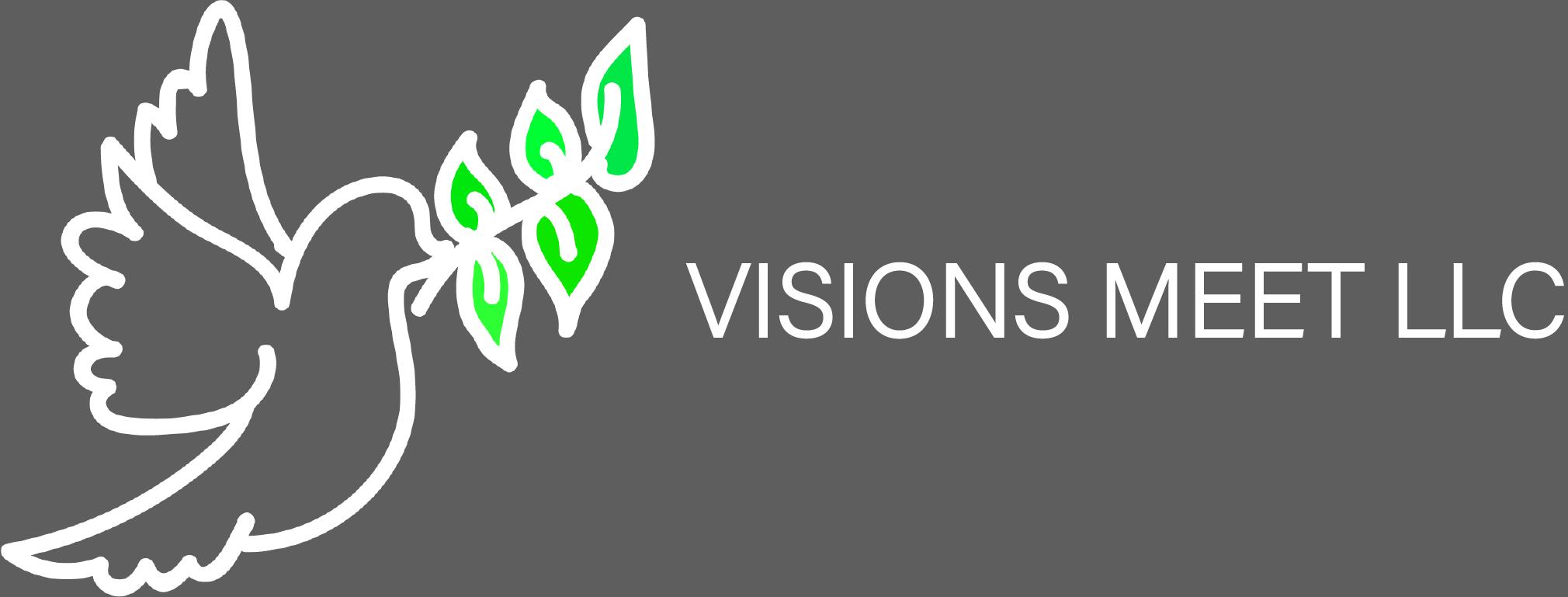visionsmeetlogo_orig gray backdrop